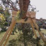 Treskulptur i Storelvdal